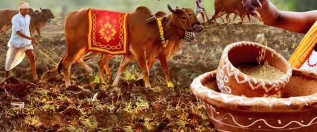 Akshaya tritiya farmer